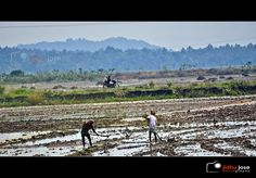 Hands at work by Jidhu Jose Photography, via Flickr