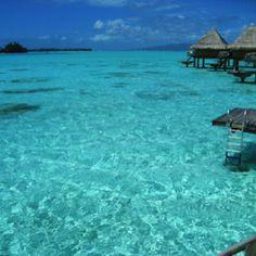 It's Perfectly clear, Bora Bora, Tahiti Tahiti, Bora Bora, Oh The Places You'll Go, Places Ive Been, Beach Resorts, Dream Vacations, Where To Go, Beautiful Places, Perfectly Clear