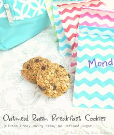 Oatmeal Raisin Breakfast Cookies {GF, DF, No refined sugar} - Back To The Book Nutrition