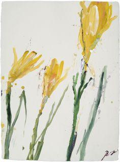 Robert Jakob, Garden Notes, 2010