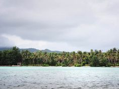 The Menjangan Kecil Island offers gorgeous white sand and coconut-tree-lined beaches that are as peaceful as it is desolate. Located amidst the tiny yet gorgeous archipelago of Karimun Jawa, the waters are calm and swimmer-friendly.