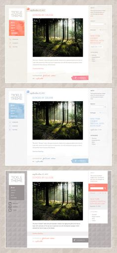 cool wordpress themes