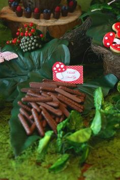 Hole up with these squirrel snacks Enchanted Forest Woodland Fairy Girl Birthday Party Planning Ideas Princesse Party, Ben E Holly, Gruffalo Party, Fairy Birthday Party, Girl Birthday, Birthday Ideas, Garden Birthday, Party Garden, Birthday Table