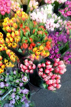 Tulips At Columbia Road Flower Market Rachelphipps Happy Flowers, Tulips Flowers, Flowers Nature, Planting Flowers, Beautiful Flowers, Floral Flowers, Spring Flowers, Cactus Flower, Exotic Flowers