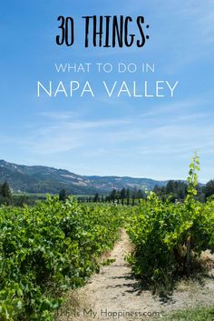What to do in Napa Valley, California