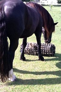 The NIBBLENET ® Slow Feeder Hay Bags Rock-N-Roll - thenibblenet.com - Official website of The NIBBLENET ® Slow feeder Hay Bag - Slow Feed Hay Bags for Horses