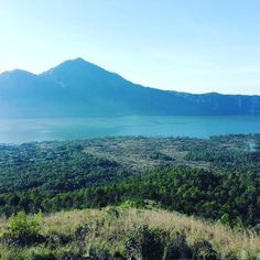 Picture taken on the way down from mount batur on Bali in 2016