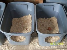 #DIY #chicken nesting boxes. I use these for mine but with the lids on so the hen is dark and comfortable. But they all LOVE to roost on top of these and poo all over them. Trying to figure out a new method with a slanted roof on top of the tubs so they can't sit up there and stick to their roosts instead.