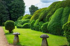Cloudlike hedges of yew and boxwood surround Bramdean House in Hampshire.