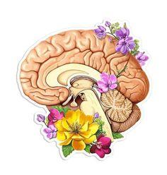 Tumblr Stickers, Anime Stickers, Cool Stickers, Laptop Stickers, Flower Anatomy, Medical Art, Medical Doctor, Anatomy Art, Brain Anatomy