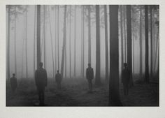 martin vlach, trees, people