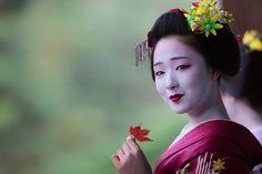 November 2015: maiko Mamefuji of Gion Kobu by ta_ta999 - blog