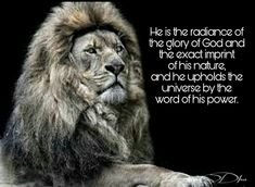 #Courage #Boldness #wisdom #Warriorheart