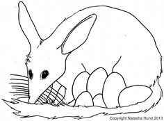 playfulljoy: Australian Easter Bilby coloring in page Easter Coloring Pages, Colouring Pages, Easter Bilby, Harmony Day, Christian Holidays, Anzac Day, Australia Day, Australian Animals, Easter Treats