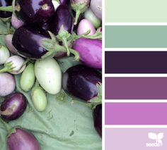 aubergine dreams by Design Seeds Colour Pallette, Color Palate, Colour Schemes, Color Combos, Color Patterns, Design Seeds, Pantone, Eggplant Color, Colour Board