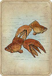 Spådom i kort - Madame Lenormand's kort för 2019 Deck Pictures, Astronomy, Moose Art, Fish, Cards, Animals, Animales, Animaux, Pisces