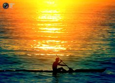 A Sydney surf lifesaver paddles his surf ski after sunrise at Manly Beach on Sydney's north shore Ocean Kayak, First Day Of Winter, Manly Beach, Water Life, Lifeguard, Great Shots, North Shore, Kayaking, Skiing