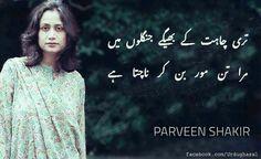 U Poetry Hindi, Poetry Quotes, Parveen Shakir Poetry, Mohsin Naqvi Poetry, Forms Of Literature, Urdu Shayri, Urdu Words, Poems, Wisdom