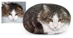 Pinto's portrait - acrylic on rock - cm. 18 | This new cat portrait was painted for Elisabeth on a smooth medium-sized sea stone. Do you want to portray yours? Visit my shop: www.RobertoRizzoArt.etsy.com