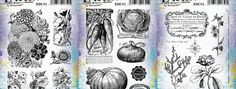 """Search Results for """"infusions and stamps"""" – scrapcosy"""