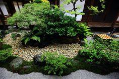 緑がたくさん使われた観智院の四方正面の庭