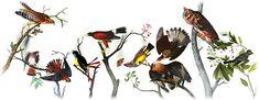 226. výročie narodenia Johna Jamesa Audubona