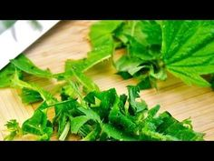 Pokrzywa a zdrowie. Wpływa na ukrwienie, potencję i odporność organizmu [Wirtualna Poradnia] - YouTube Parsley, Herbs, Youtube, Food, Eten, Herb, Meals, Spice, Diet