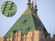 Peregrine on Fisher Building rooftop, Detroit USA