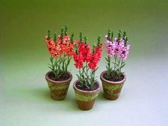 Miniatuur bloemen en planten: Georgie Steeds