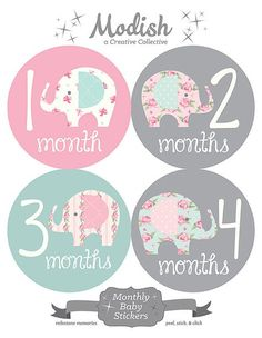 FREE GIFT, Elephant Monthly Baby Stickers, Baby Girl, Baby Girl Month Stickers, Baby Month Stickers, Pink, Grey, Mint Green, Elephants