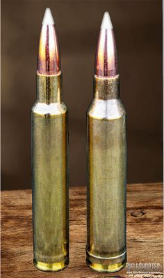 What Is A True Magnum Cartridge   Win Exceed And Guns