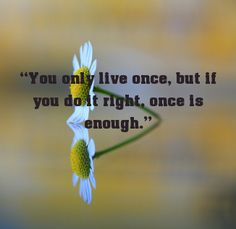 """You only live once, but if you do it right, once is enough.... - shared via pinterestpicture.com"