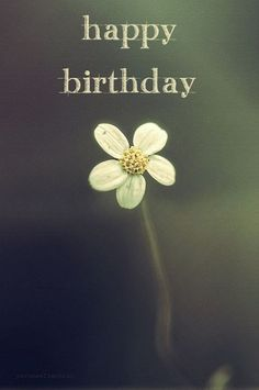 52 sweet and funny Happy Birthday images for men, women, siblings, friends & family. Touching birthday images full of humor & beautiful loving wishes. Birthday Images For Her, Cool Happy Birthday Images, Happy Birthday For Her, Happy Birthday Wishes Cards, Happy Birthday Meme, Best Birthday Wishes, Birthday Pictures, Birthday Ideas, Happy Birthdays
