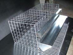 Quail Pen, Quail Coop, Chicken Incubator, Chicken Cages, Rabbit Cages, Pet Stuff, Farms, Poultry, Quails