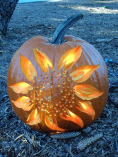 Sunflower pumpkin. Flickr - Photo Sharing!