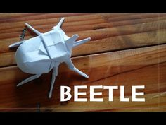 Origami How to make a Beetle - YouTube