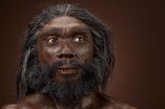 HOMO HEIDELBERGENSIS Eran individuos altos que tenían 1,80 m de estatura y muy fuertes (llegarían a 105 kg), de grandes cráneos que median 1350 cm³, muy aplanados con relación a los del hombre actual, con mandíbulas salientes y gran abertura nasal.2 Se trata de la primera especie humana en la que es posible detectar indicios de una mentalidad simbólica.