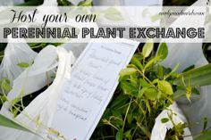 Steal this idea: Host a perennial plant exchange this spring. This is a fun way to hang out with friends and grow your garden (for free(.