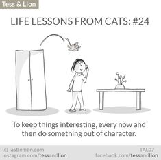 LIFE LESSONS FROM CATS: #24 - To keep things interesting, every now and then do something out of character.