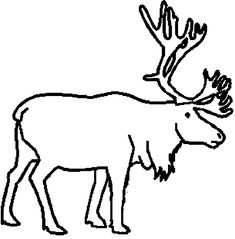 clipart caribou yahoo image search results
