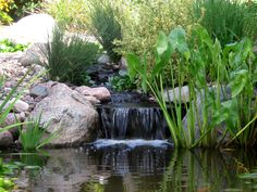 A beautiful waterfall by The Bruce Company. Pond Water Features, Garden Waterfall, Beautiful Waterfalls, Koi, Planting Flowers, Island, Ponds, Landscape, Gardening