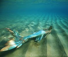 Love that the fins on this are so thin they are translucent, and how it flows. Fantasy Mermaids, Real Mermaids, Mermaids And Mermen, Fantasy Creatures, Mythical Creatures, Sea Creatures, Mermaid Cove, Mermaid Fairy, Mermaid Poems