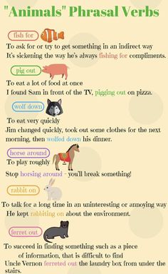 Phrasal Verbs related to Animals ....