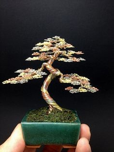 3 color wire bonsai tree by Ken To by KenToArt on deviantART