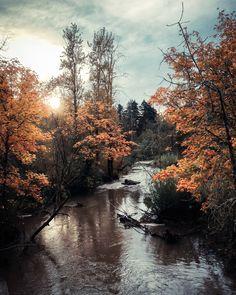Springwater Corridor Trail (by photosbysomeguy)