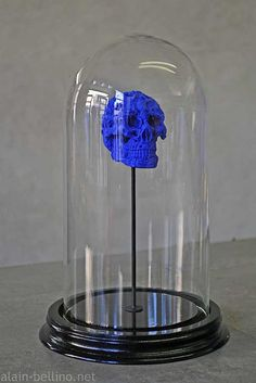 Alain Bellino | limited edition skull in a glass bell