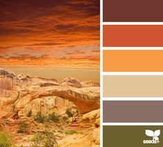 Desert colors - colorful, yet warm and masculine. Plus well be in the desert without being in the desert.