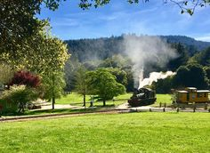 A late afternoon relaxing walk in Felton at Roaring Camp & Big Trees Narrow Gauge Railroad always provides scenic views of the Santa Cruz Mountains.  Mountain living has its perks. #california #centralcoast #montereybay #santacruzsunset #santacruzmountains #sunset #felton #castateparks #henrycowell #redwoodforest #sunsetview #visitsantacruz #visitcalifornia #santacruzwaves #treescape #landscape #landscapephotography #scenic #cloudscape #landscape_captures #sunsets #iphone6 #wildcalifornia…