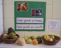 Example of using signs in the science center to add print to the pre-k classroom