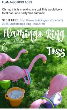 flamingo ring toss = cute game for the kids at a luau Flamingo Party, Flamingo Birthday, Luau Birthday, Birthday Games, Flamingo Ring, Outdoor Birthday, Hawaiian Birthday, Hawaian Party, Outdoor Games For Kids